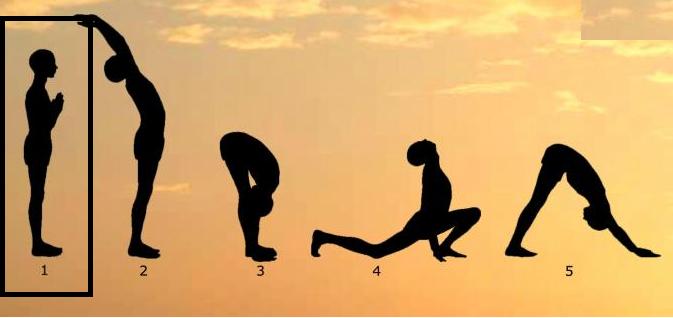 Surya Namaskar 4 Yoga